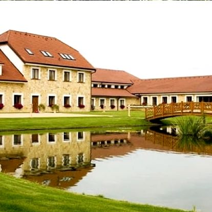 Luxusní wellness pobyt v Hotelu LIONS Nesuchyni s polopenzí, vstupem do bazénu, vířivka, sauna.