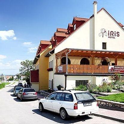 3–6denní wellness pobyt pro 2 osoby v hotelu Iris*** u Mikulova