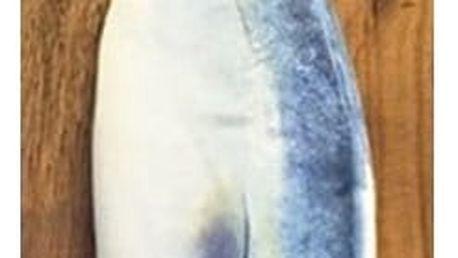 Školní penál v podobě ryby