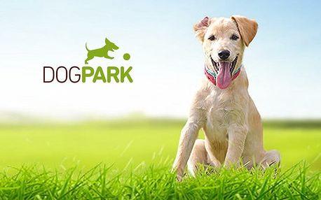 2–8 radostných dnů pro vašeho pejska ve Psím hotelu a školce Dogpark v Roztokách u Prahy