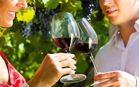 3 až 5denní vinařský pobyt pro 2 s degustací ve Vinném sklepě Mikulčice na Moravě