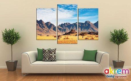 Originální 3dílný obraz s 3D efektem o rozměrech 75x50 cm s různými motivy