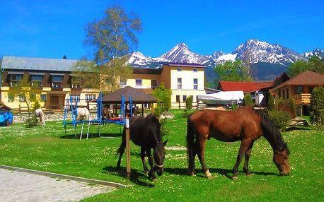 3 až 6denní wellness pobyt pro 2 s dětmi do 5 let v penzionu Monty Ranch v Tatrách