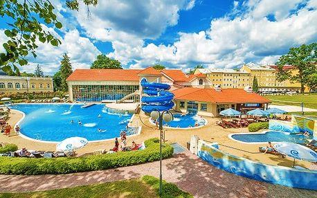 3–4denní luxusní pobyt pro 1 osobu v hotelu Pawlik**** ve Fr. Lázních