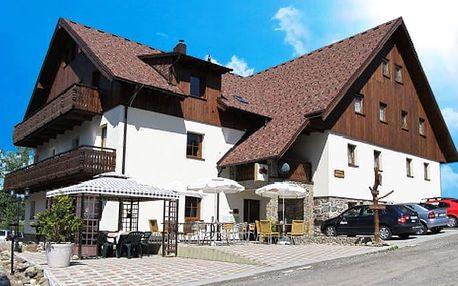 3–6denní pobyt s polopenzí pro 2 +1 dítě do 15 let v penzionu Alpský Dům na Šumavě