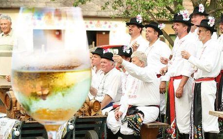 3 až 5denní vinařský pobyt pro 2 s degustací ve Vinném sklepě Prušánky na Moravě