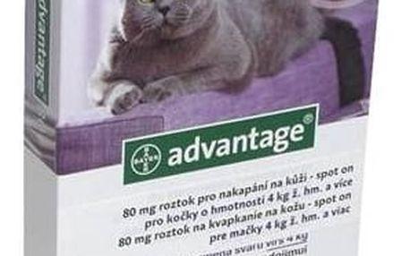 Pipeta Bayer ADVANTAGE Spot-on Cat 4x0,8 ml (pro kočky 4 kg a více)
