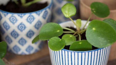 IB LAURSEN Květník Casablanca blue Typ C, modrá barva, keramika
