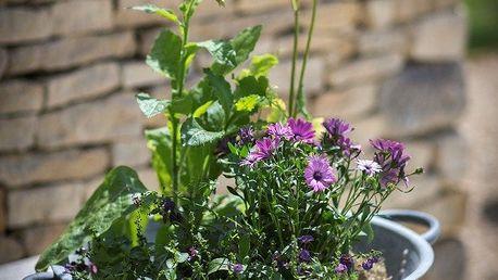 Garden Trading Zinkový květináč/chladič Bibury 59 cm, šedá barva, kov