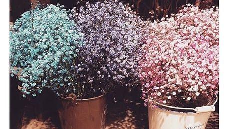 Šater latnatý (100 kusů) - různé barvy