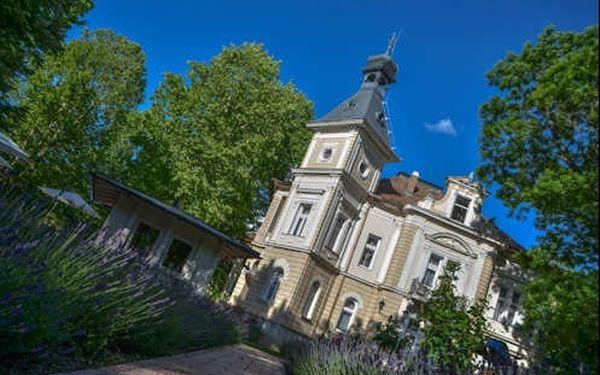 Pobyt ve 4* vile jen 400 m od jezera Balaton pro dva s polopenzí a saunovou oázou