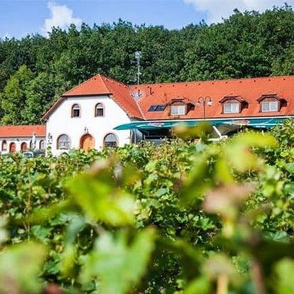 3–5denní vinařský pobyt pro 2 osoby v hotelu Sádek*** u Třebíče s polopenzí