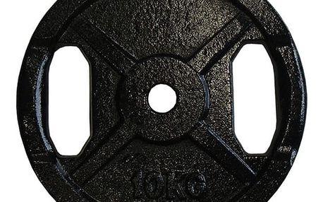 Litinový kotouč s úchopy 10 kg - 25 mm