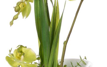 Dekorace z umělých a sušených květin Zelená orchidej