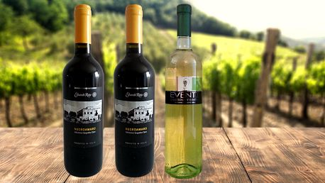 Výborná italská vína: výběr ruční sklizeň a výroba