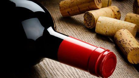 4 litry bílého nebo červeného vína