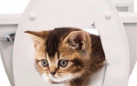 Samolepka kočky na záchod