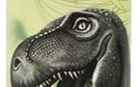 Láhev na pití P + P Karton T-Rex