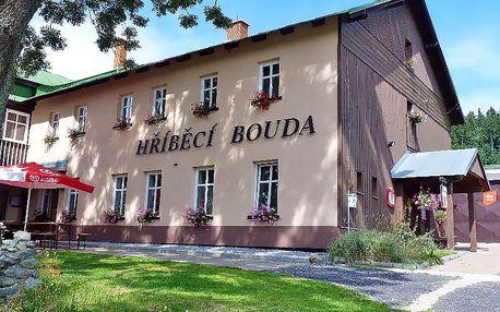 Relax v Krkonoších: stylová horská chata, polopenze, sauna a vířivka + zapůjčení kol zdarma