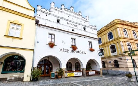 2 nebo 3denní pobyt plný slev pro 2 osoby v hotelu Bílý koníček*** v Třeboni