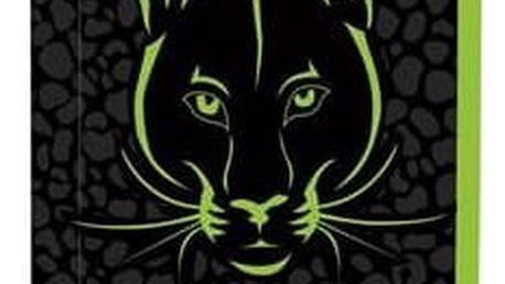 Penál školní P + P Karton jednopatrový Panther