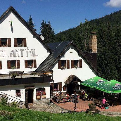 Hotel Antýgl v srdci Šumavy s polopenzí