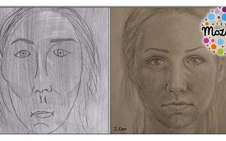 Novinka, pokračovací kurz kreslení pravou mozkovou hemisférou reálná kresba a autoportrét, nejširší nabídka kurzů po celé ČR. Již jste zkusili první kurz a bavilo vás kreslení? Naučte se nové dovednosti - reálně kreslit vše, co kolem sebe vidíte - předmět