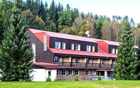 Wellness pobyt pro dva s polopenzí v hotelu Bon***, vířivka, sauna, bowling, slevová karta.