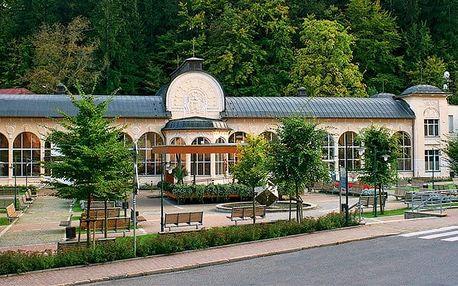 3 nebo 5denní wellness pobyt pro 2 se snídaněmi v hotelu Zlatá Kotva v Krkonoších