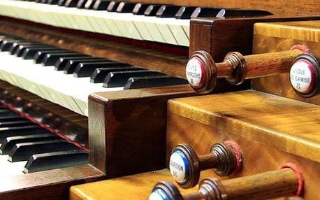 Vstupenka na koncert - Mozart, Dvořák, Strauss v krásném barokním Michnově paláci na Malé Straně.