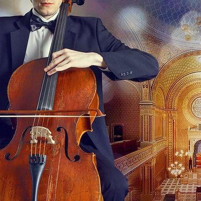 Vstupné na koncert ve Španělské synagoze