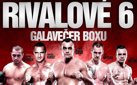 VIP vstupenka na boxerský galavečer Den Rváčů