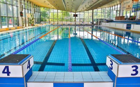 5 vstupů do bazénu se saunou a vířivkou