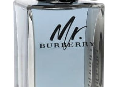 Burberry Mr. Burberry 100 ml toaletní voda tester pro muže