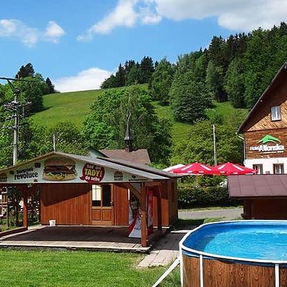 Hotel Alfonska***