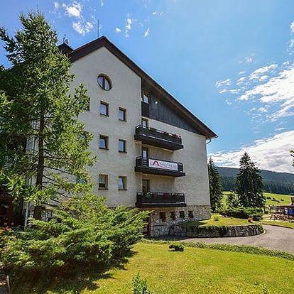 Hotel Andromeda***, Ramzová, Jeseníky - save 29%, 3* wellness hotel s polopenzí v krásné přírodě Jeseníků