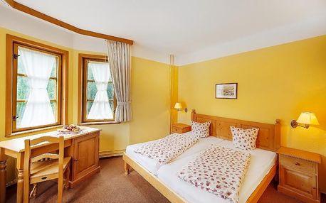 Špindlerův Mlýn pro dva s polopenzí a wellness v Alpském hotelu***+