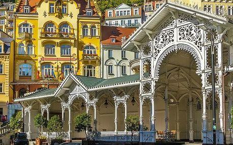 Spa Hotel Čajkovskij Palace****