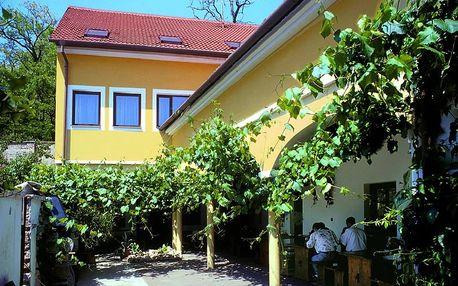 Vinařský pobyt u Znojma s neomezenou konzumací vína a burčáku