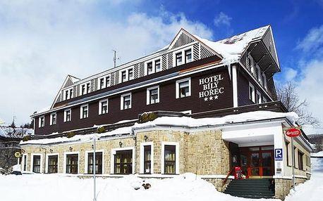 Spa Hotel Bílý Hořec***, Stylový horský hotel s wellness ve stylu římských lázní
