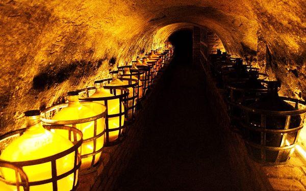 Vinařský pobyt u Znojma na 2 dny pro dva s degustací vína