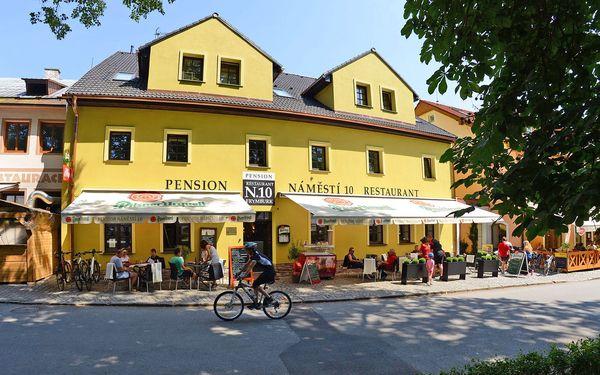 Pension N.10
