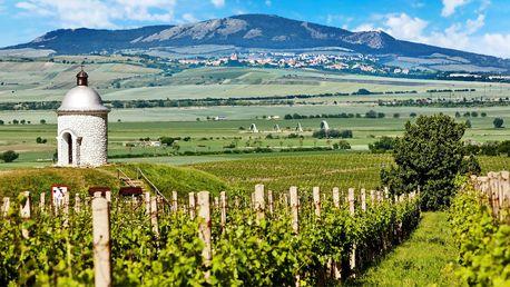 Moravská podzimní pohádka s vínem i jídlem