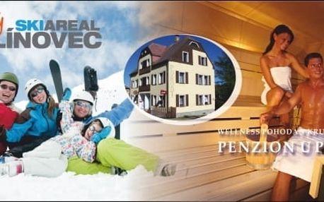 Zimní wellness dovolená v penzionu U Pohody v Krušných horách.