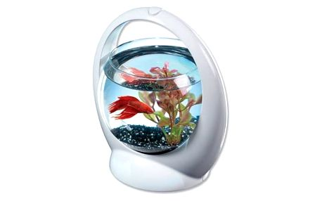 Akvárium Tetra Betta Ring 1,8l plast