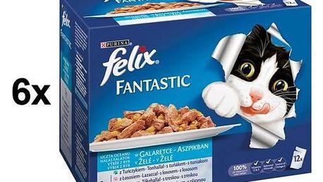 Kapsička Felix Fantastic výběr z ryb 6 x (12 x 100g)