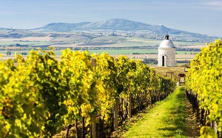 Podzim na Pálavě s polopenzí a lahví vína