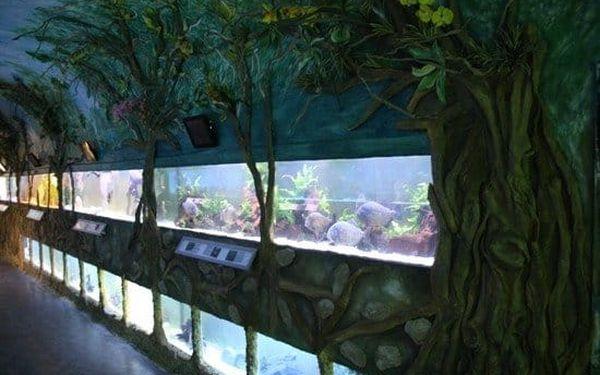 Zoo Mořský svět