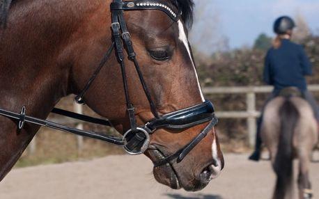 Jízda na koni po Karlštejně