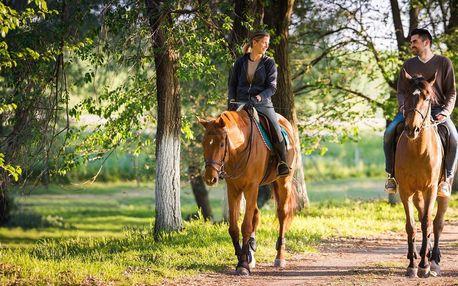 60 minut v koňském sedle: vyjížďka či výuka
